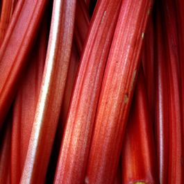 Dadac190-b31d-4329-bbf0-4bdb97959aee--rhubarb_in_borough_market