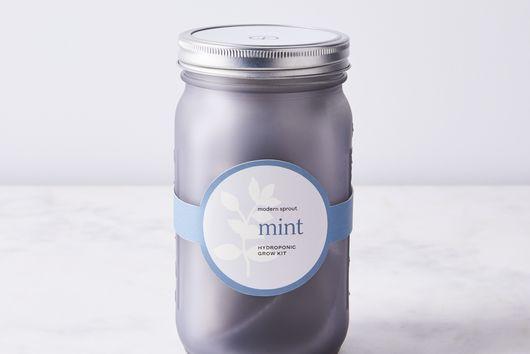 Garden Jar Herb Kit