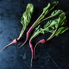Chioggia Beet: The Root That Longs to be a Candy Striper