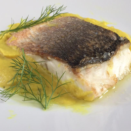 Sea bass with fennel sauce.