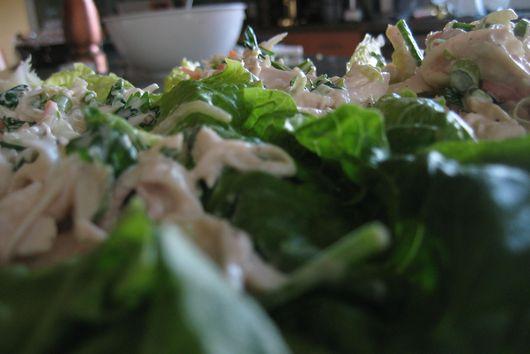 Cilantro Chicken Salad in Lettuce Cups