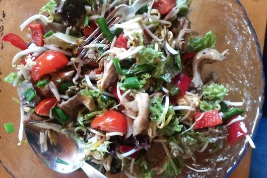 Mushroom - Soy Sprout Salad