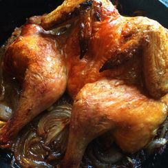 Spatchcocked Roast Chicken with Onion, Preserved Lemon and Middle Eastern Spices