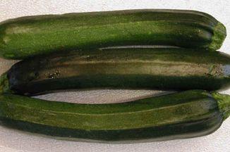 87cfb980 8e77 45f7 a9b5 9cccf6ce47fa  i squash zucchini