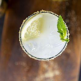 Lemon-Infused Ouzo Mint Spritzer