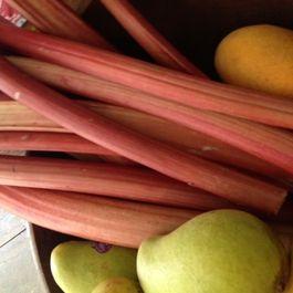 Rhubarb by Lisakb