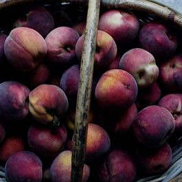 Why You Might Have a Hard Time Finding Local Peaches This Year