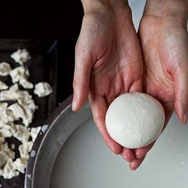 How to Make Mozzarella