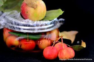 7ad02b74 d05e 4063 b07d 40572b2fe486  crab apple in brine