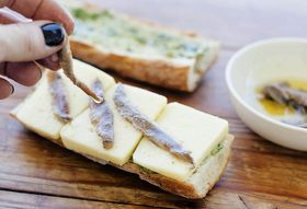 Anchovies 101