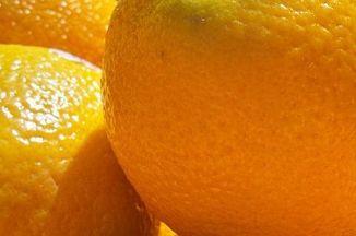 1fd36ead d9aa 4035 9ceb bbd203958dd3  orange