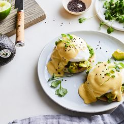 Avocado Toast Benedict, Why Didn't We Meet You Sooner?