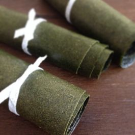 Dinosaur Kale Fruit Leather