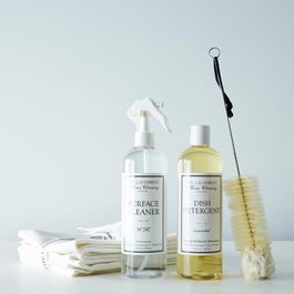 All Natural Surface Cleaner, Dish Detergent, Brush and Cloths