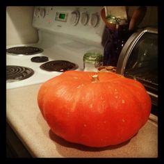 No Frill Cinderella Pumpkin Soup