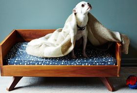 5a0483cd ff1c 4e4e a706 9f6bf0f95f9f  2014 1031 eat sleep fetch mid century modern dog bed carousel 028
