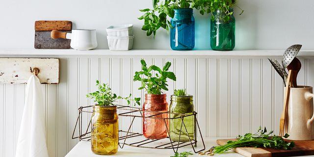 2faf7550 7836 43cb 8b08 f701e3305ffd  2016 0321 modern sprout garden jar herb kit carousel bobbi lin 2731