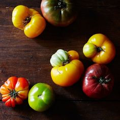 What Do Tomatoes Have in Common with Cats?