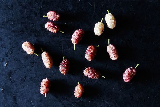 Mulberries: The Fruit That's Probably Growing in Your Yard Right Now