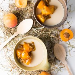 Hay Panna Cotta & Apricots