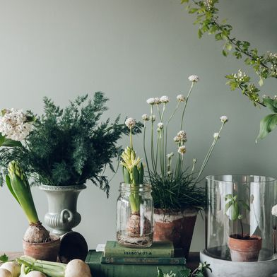4 Ways to Make Your Table Look Like a Fairy Tale