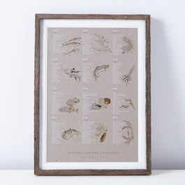 Framed Seasonal Seafood Print