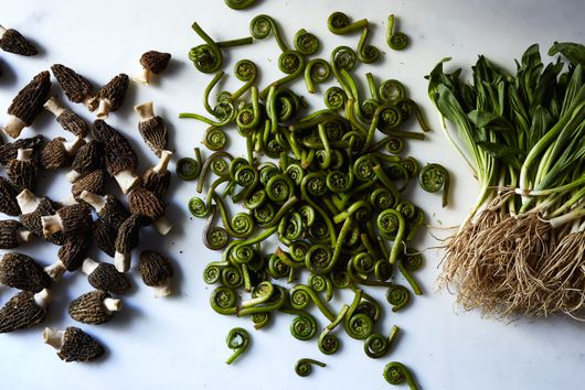 My Mom Has Always Foraged—A Year Into the Pandemic, I Understand Why