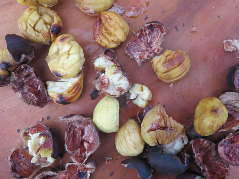 The light-colored chestnuts is still raw, whereas the toastier looking ones are cooked through.