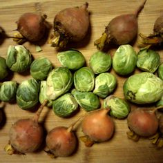 Roasted Brussels Sprouts and Golden Beets