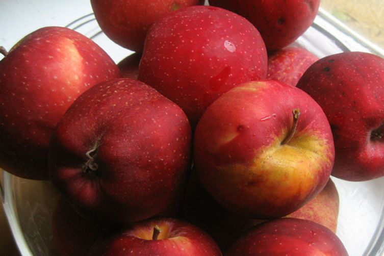 Spicy Apple Relish