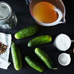 How to Pickle Anything at a Moment's Notice