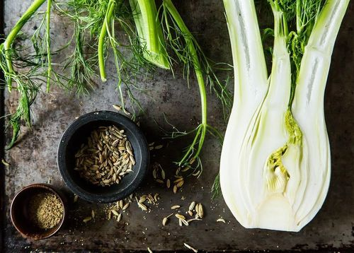 Your Best Fennel