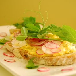 576557d5 a5e7 4277 bfd6 39e64ee6d847  curried egg salad tartine