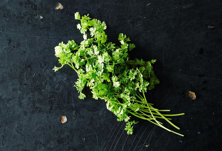 Chervil and the Best Ways to Use It