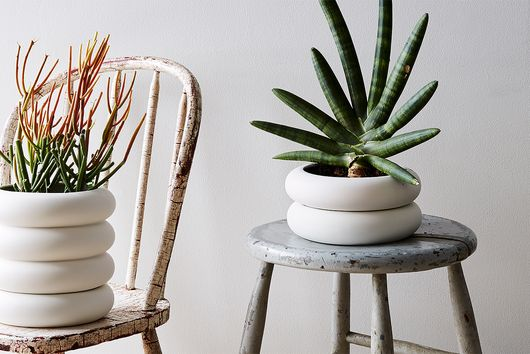 10 Green Thumb Instagrammers You Should Follow