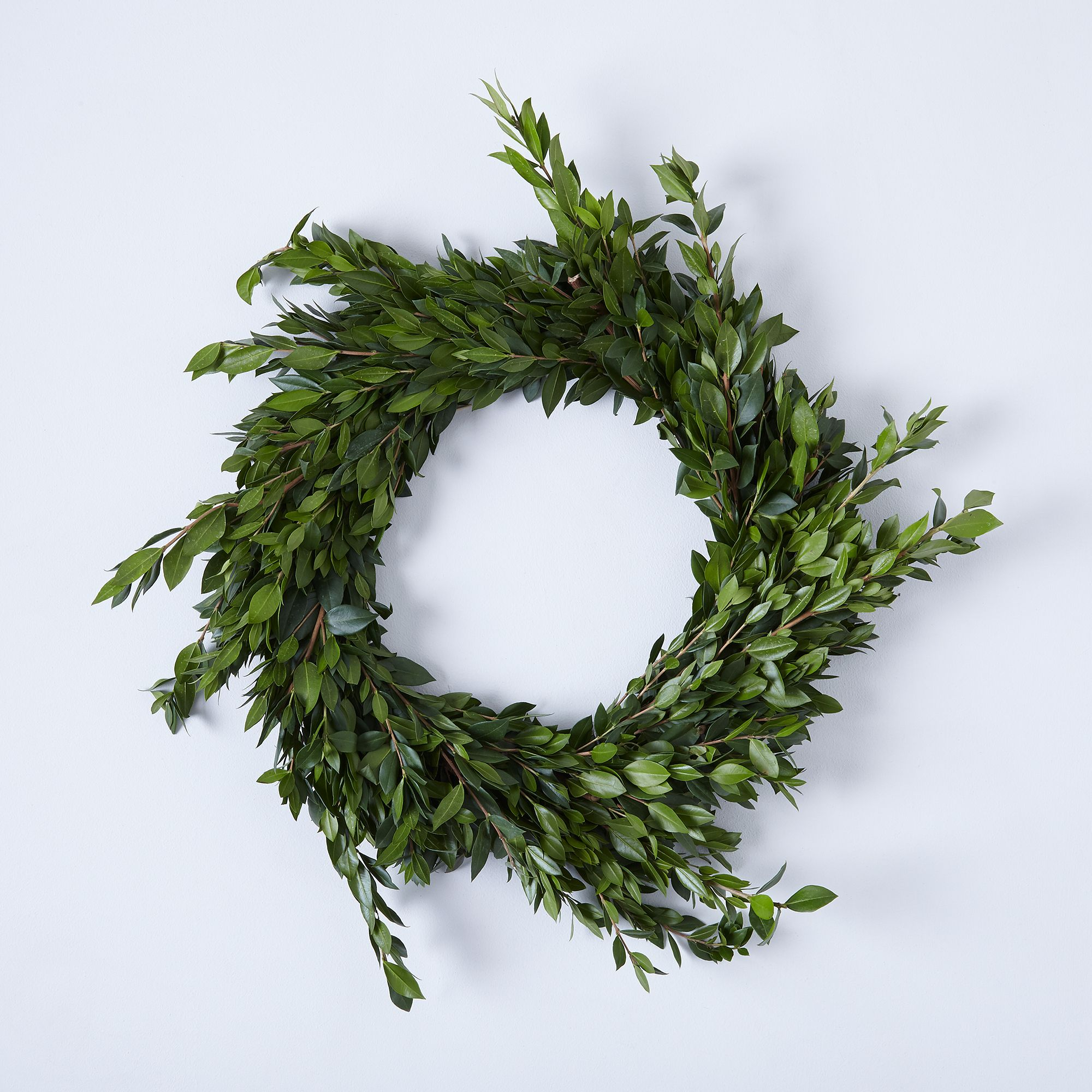Boxwood & Myrtle Wild Wreath