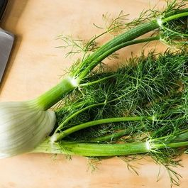 How to Prep Fennel