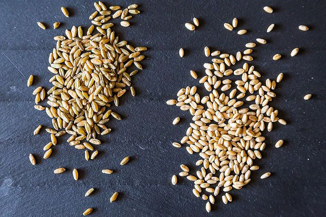 Whole Grains on Food52