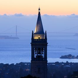 Pick Your Berkeley Vibe & We'll Tell You Where to Find It