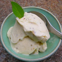 ICE CREAM GELATO SORBET by Ann Wilson