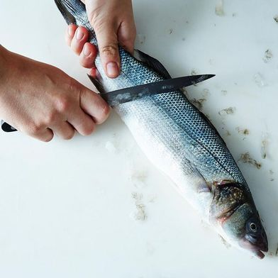 6 Questions You Should Be Asking Your Fishmonger