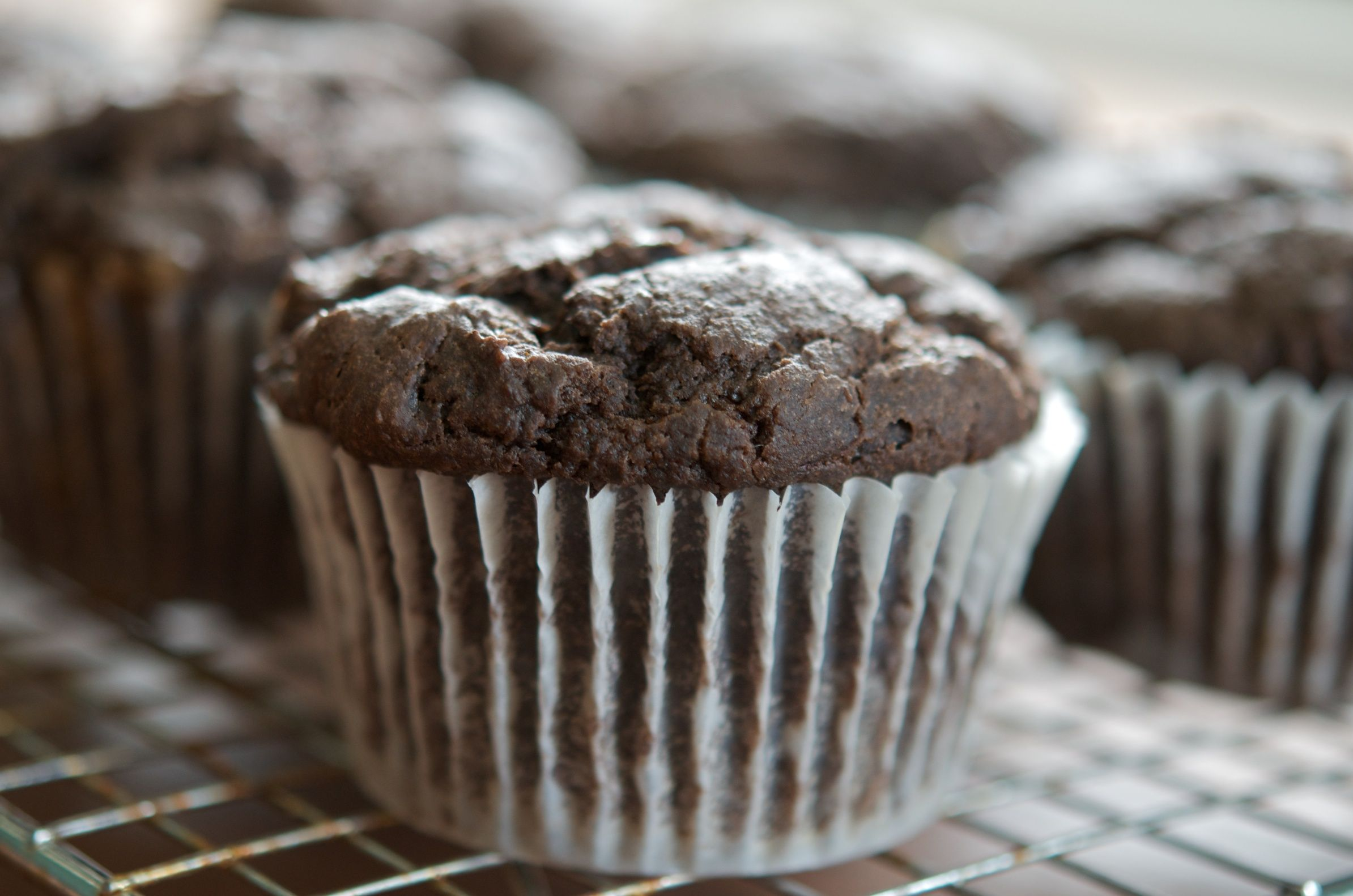 CHocolate Persimmon Muffin
