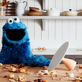 Cookie Monster's New Book Sounds Oddly Charming