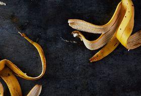 090c2843 1b35 481e a395 2ef6ac19e64a  2017 0711 burnt toast banana peels instagram bobbi lin 31049