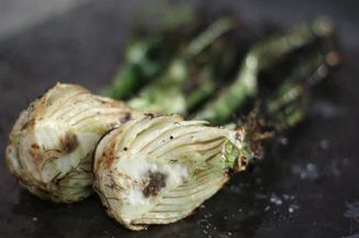 302917bd 201a 49dd bb9b c805c7db208c  fennel on the grill