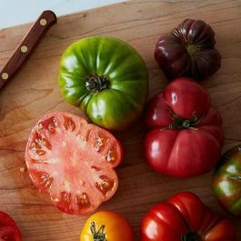 Tomatoes by marynn