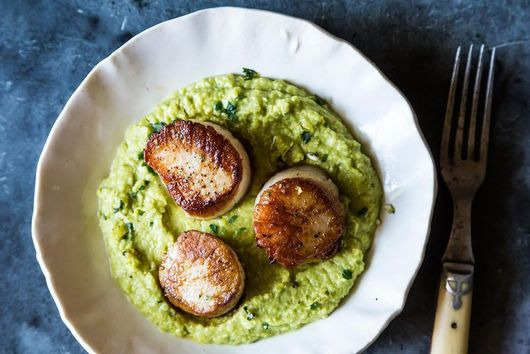Dinner Tonight: Seared Sea Scallops with Gingered Pea Purée and Cilantro Gremolata