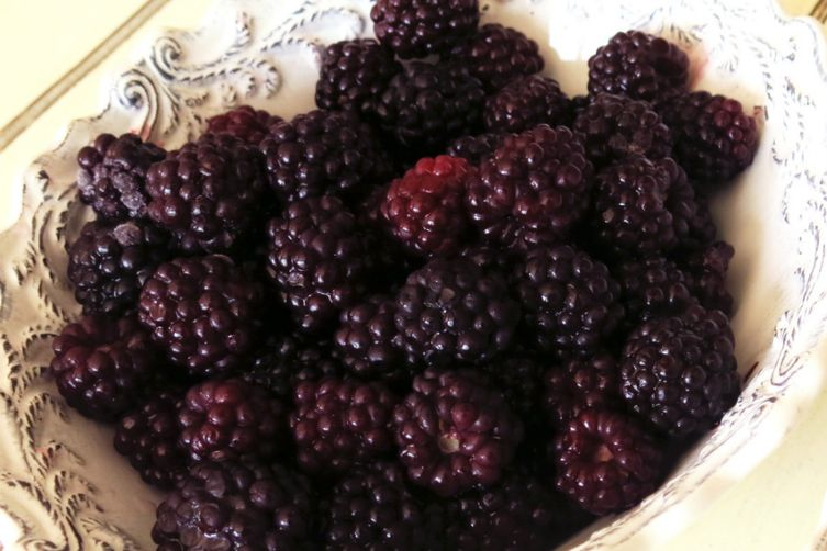 Blackberry Granita (Super easy)