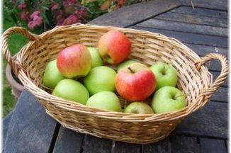 4e9c7da9 20bf 4ed1 8a9d 95a571f0bc5b  basket apples