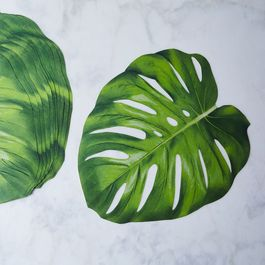 Monstera Leaf Placemats (Set of 12)